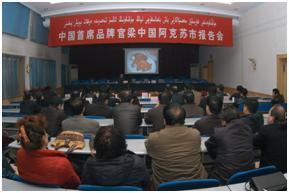 200701梁中国为新疆阿克苏党政领导作报告